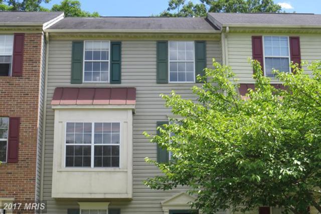 203 Clint Lane, Fredericksburg, VA 22405 (#ST9973890) :: LoCoMusings