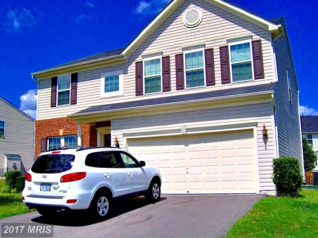15 Wildwood Place, Fredericksburg, VA 22406 (#ST9986199) :: LoCoMusings