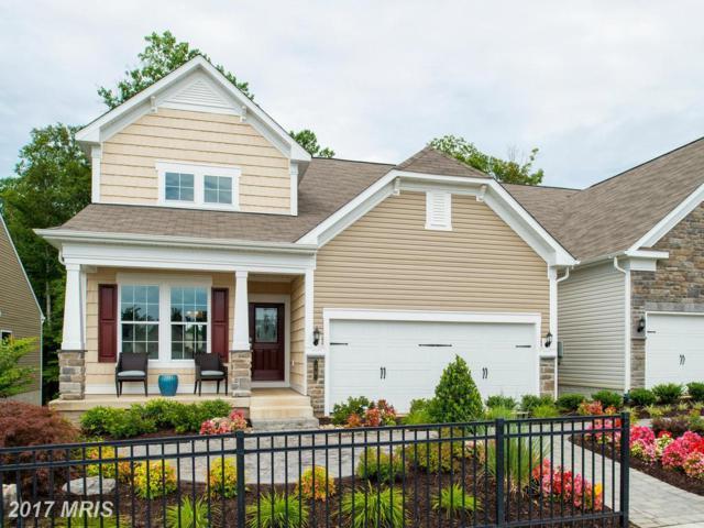 11 Mcquarie Drive #03, Fredericksburg, VA 22406 (#ST9989800) :: LoCoMusings