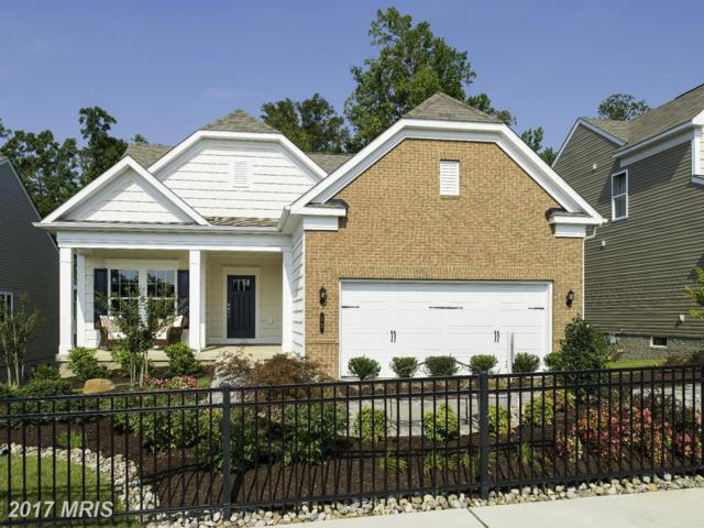 11 Mcquarie Drive #04, Fredericksburg, VA 22406 (#ST9989801) :: LoCoMusings