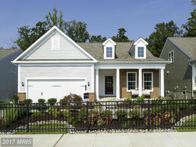 11 Mcquarie Drive #05, Fredericksburg, VA 22406 (#ST9989803) :: LoCoMusings