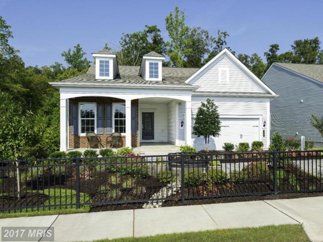 11 Mcquarie Drive #06, Fredericksburg, VA 22406 (#ST9989804) :: LoCoMusings