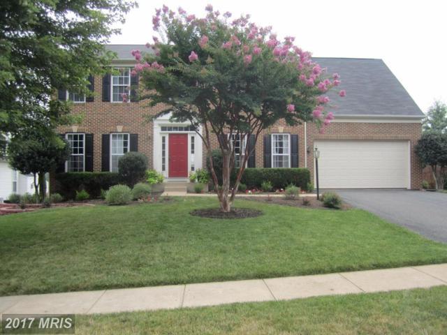 10 Palladio Drive, Stafford, VA 22554 (#ST9993183) :: LoCoMusings