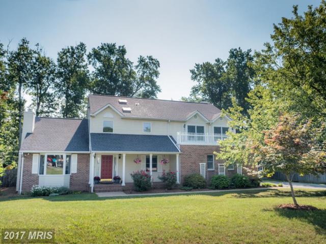 97 Cleremont Drive, Fredericksburg, VA 22405 (#ST9993496) :: LoCoMusings