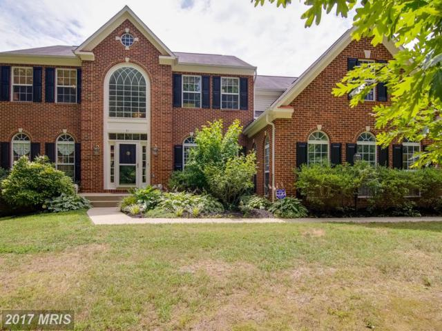 31 Meadowbrook Lane, Stafford, VA 22554 (#ST9993919) :: Pearson Smith Realty
