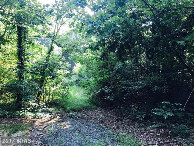 38 Cornwallis Drive, Fredericksburg, VA 22405 (#ST9999733) :: LoCoMusings