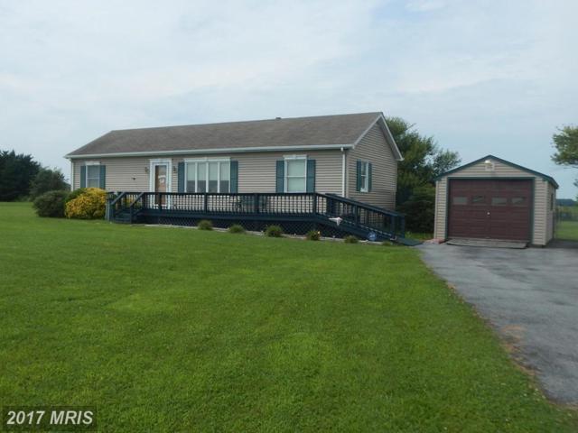 16468 Progress School Road, Bridgeville, DE 19933 (#SU10032224) :: Pearson Smith Realty