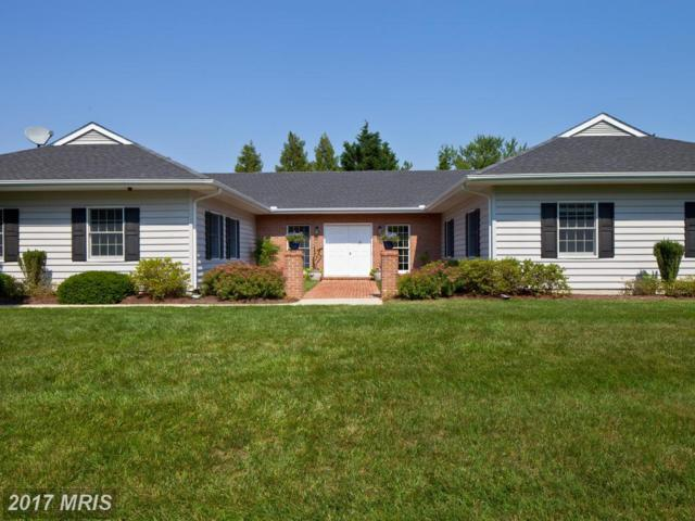 56 Davis Lane #0, Easton, MD 21601 (MLS #TA10017564) :: RE/MAX Coast and Country