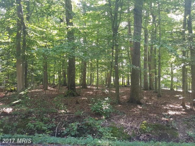Woodridge Drive, Easton, MD 21601 (#TA10049150) :: LoCoMusings