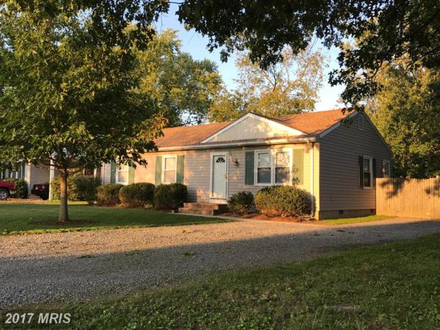 3840 Harrison Circle, Trappe, MD 21673 (#TA10050323) :: Pearson Smith Realty