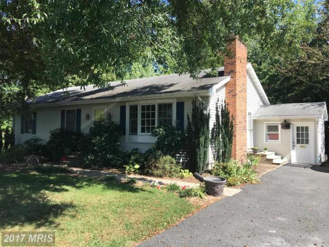 805 Radcliff Avenue, Saint Michaels, MD 21663 (#TA10065389) :: Pearson Smith Realty