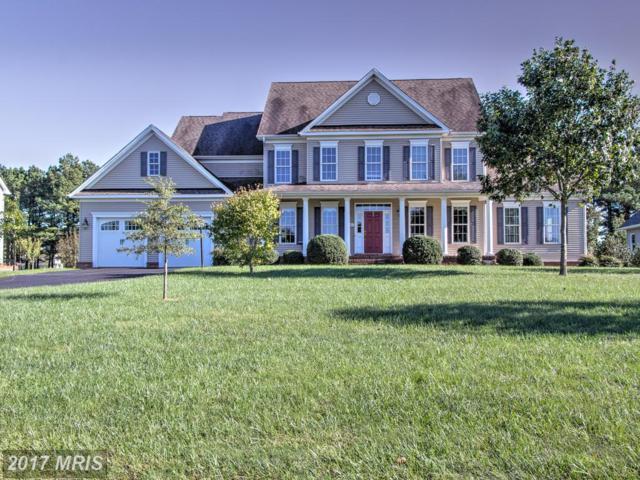 13566 Rustling Oaks Drive, Wye Mills, MD 21679 (#TA10085999) :: Pearson Smith Realty