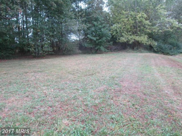 Island Creek Neck Road, Trappe, MD 21673 (#TA10089718) :: Pearson Smith Realty