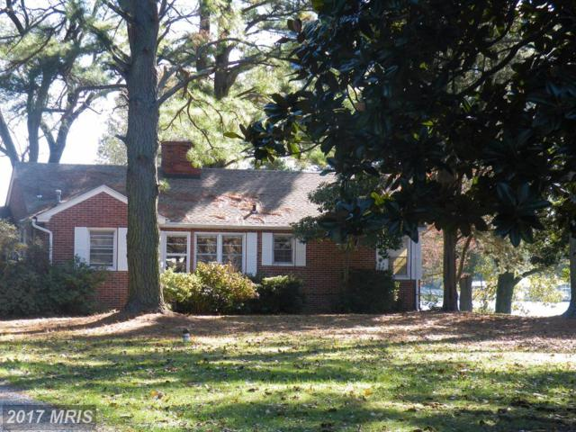 8997 Glebe Creek Road, Easton, MD 21601 (#TA10099411) :: Pearson Smith Realty