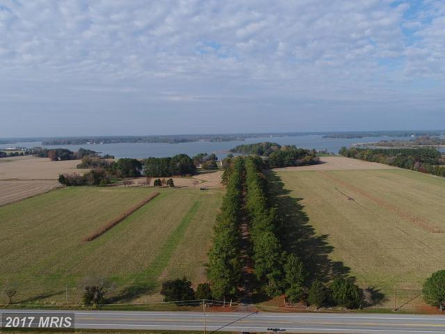 5252 Long Point Farm Drive, Oxford, MD 21654 (#TA10101374) :: The Dwell Well Group