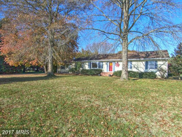 29998 Beaver Dam Road, Trappe, MD 21673 (#TA10106224) :: Pearson Smith Realty