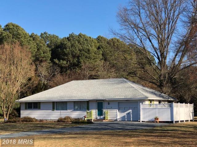 5759 Irish Creek Road, Royal Oak, MD 21662 (#TA10128040) :: Pearson Smith Realty