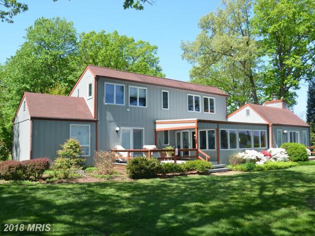 24382 Oakwood Park Road, Saint Michaels, MD 21663 (#TA10135401) :: Colgan Real Estate