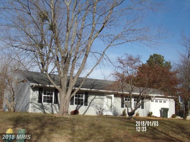 7384 Brett Road, Easton, MD 21601 (MLS #TA10135786) :: RE/MAX Coast and Country