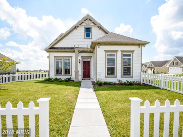 0 Village Lake Way, Easton, MD 21601 (MLS #TA10181423) :: RE/MAX Coast and Country