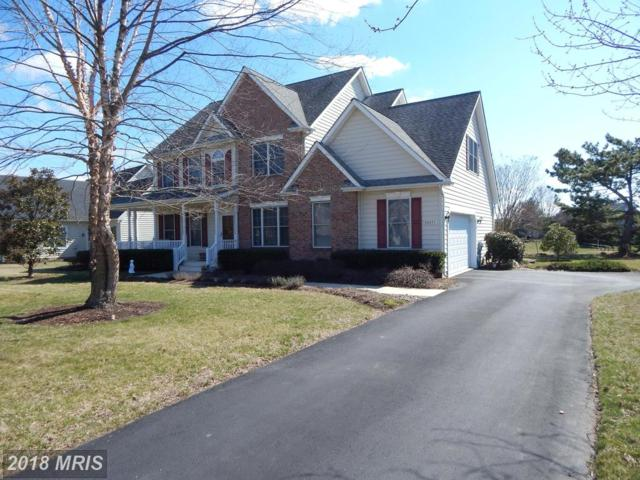 28471 Waterview Drive, Easton, MD 21601 (MLS #TA10182877) :: RE/MAX Coast and Country