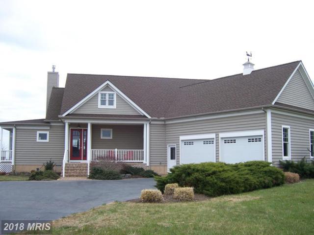 21437 Avalon Court, Tilghman, MD 21671 (#TA10188192) :: Blackwell Real Estate