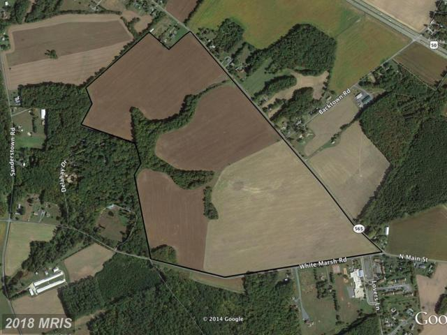 Old Trappe Road, Trappe, MD 21673 (#TA10190030) :: RE/MAX Coast and Country