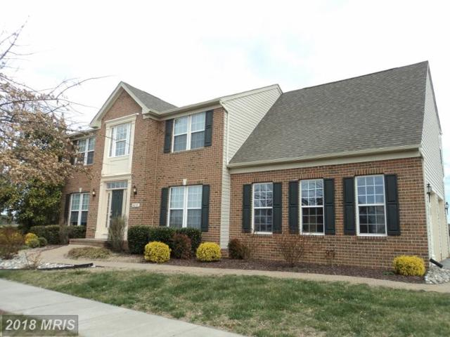 8695 Mccall Street, Easton, MD 21601 (#TA10192813) :: RE/MAX Coast and Country