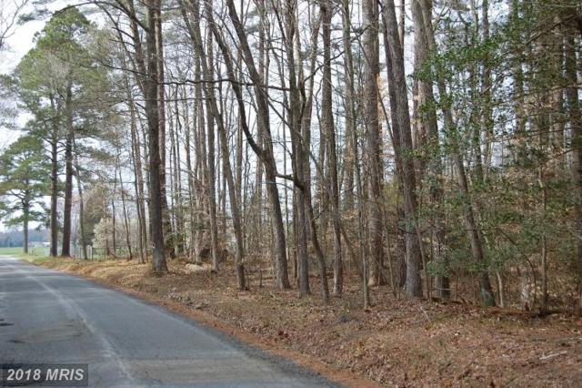Money Make Road, Trappe, MD 21673 (#TA10194279) :: RE/MAX Coast and Country