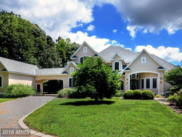 3779 Margits Lane, Trappe, MD 21673 (#TA10200369) :: The Gus Anthony Team