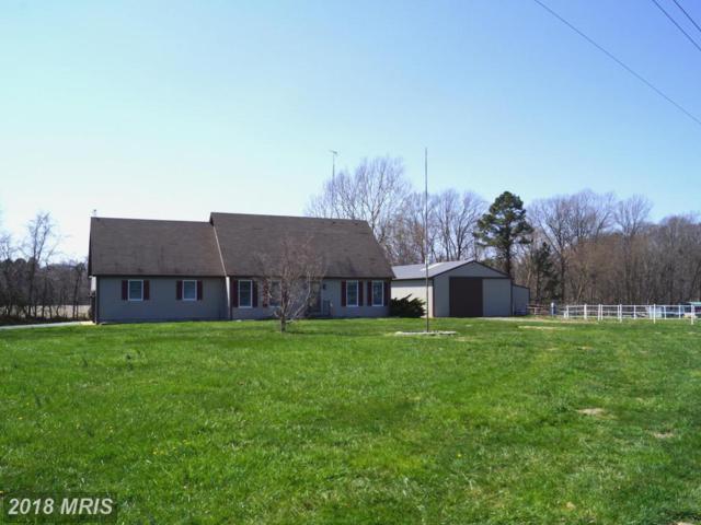 12594 Ocean Gateway, Cordova, MD 21625 (#TA10202749) :: Keller Williams Pat Hiban Real Estate Group