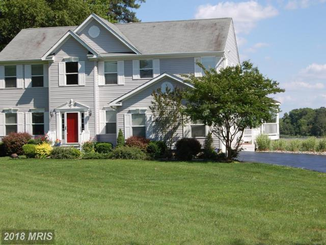 8885 High Banks Drive, Easton, MD 21601 (MLS #TA10210572) :: RE/MAX Coast and Country