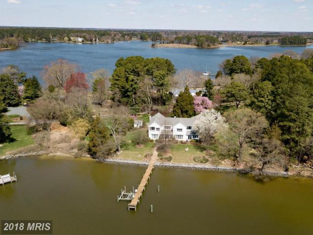 27733 Waverly Road, Easton, MD 21601 (MLS #TA10211577) :: RE/MAX Coast and Country