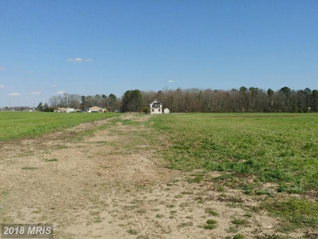 4502 Old Trappe Road, Trappe, MD 21673 (#TA10212800) :: RE/MAX Coast and Country