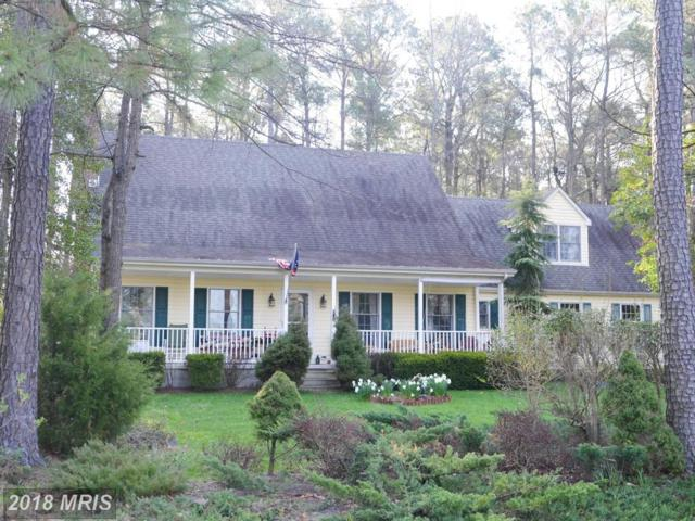 6705 Holly Woods Road, Sherwood, MD 21665 (#TA10213587) :: RE/MAX Gateway