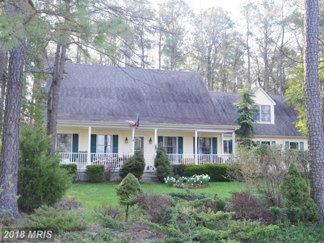 6705 Holly Woods Road, Sherwood, MD 21665 (#TA10213587) :: Keller Williams Pat Hiban Real Estate Group