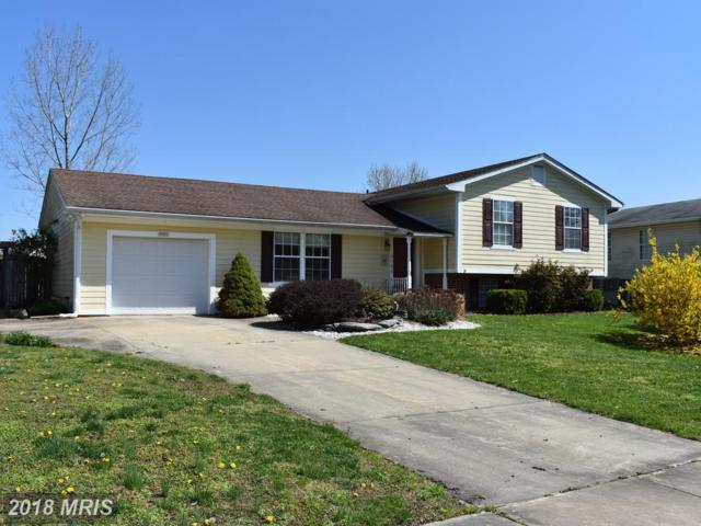 9089 Camelia Drive, Easton, MD 21601 (#TA10216995) :: RE/MAX Coast and Country