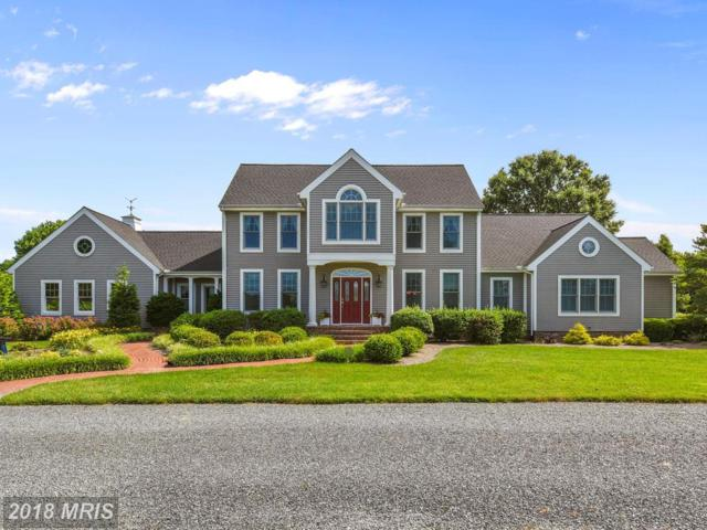 26630 Arcadia Shores Road, Easton, MD 21601 (#TA10272631) :: RE/MAX Coast and Country