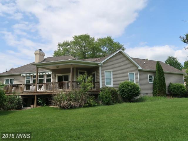 28593 Ninth Drive, Easton, MD 21601 (#TA10275971) :: RE/MAX Coast and Country