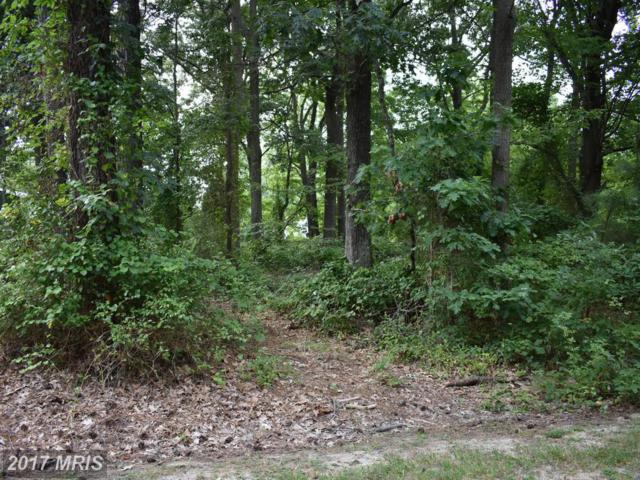 John's Way Road, Tilghman, MD 21671 (#TA9740060) :: Pearson Smith Realty