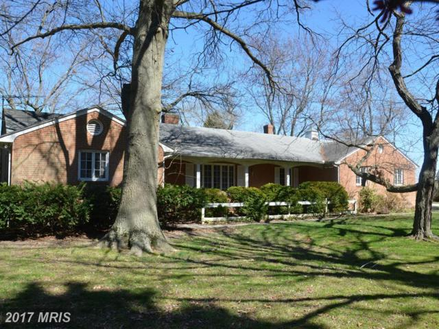 711 Riverview Terrace, Saint Michaels, MD 21663 (#TA9901298) :: Pearson Smith Realty