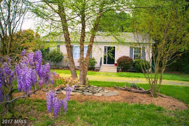 100 Bush Terrace, Saint Michaels, MD 21663 (#TA9913313) :: Pearson Smith Realty