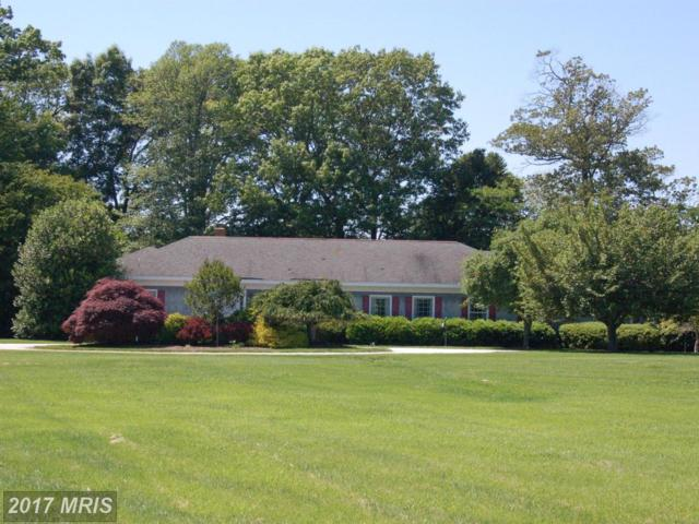 30428 Belmont Drive, Trappe, MD 21673 (#TA9956129) :: Pearson Smith Realty