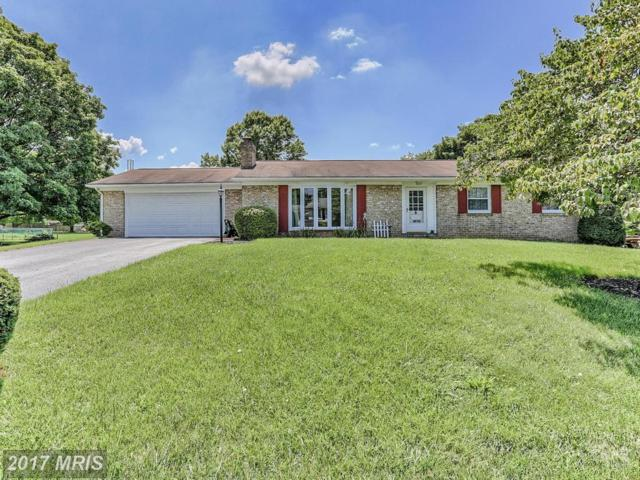 17809 Garden Spot Drive, Hagerstown, MD 21740 (#WA10021509) :: Pearson Smith Realty