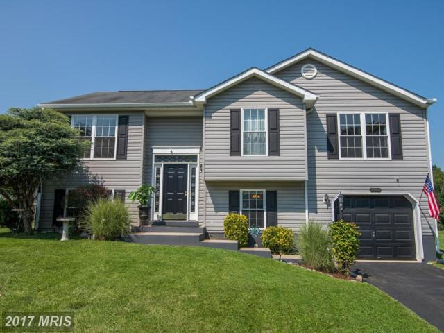 10608 Bushwillow Way, Hagerstown, MD 21740 (#WA10021537) :: Pearson Smith Realty