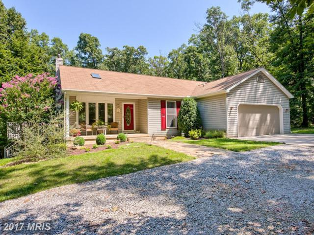 18664 Rivergate Road, Keedysville, MD 21756 (#WA10021629) :: Pearson Smith Realty