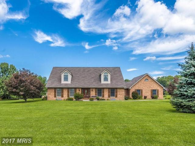 16126 River Bend Court, Williamsport, MD 21795 (#WA10028539) :: Pearson Smith Realty