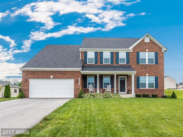 18705 Mary Flowers Way, Hagerstown, MD 21740 (#WA10031699) :: Jim Bass Group of Real Estate Teams