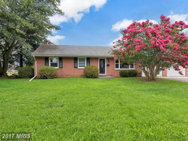 850 Noland Drive, Hagerstown, MD 21740 (#WA10032360) :: Pearson Smith Realty