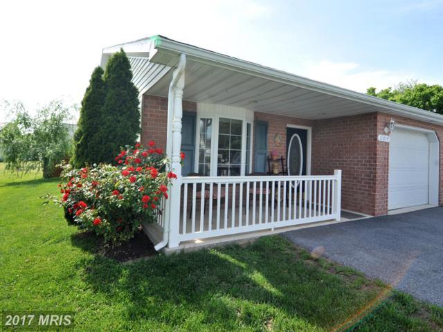 11014 Bragg Court, Williamsport, MD 21795 (#WA10032875) :: Pearson Smith Realty